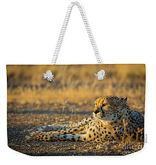 Reclining Cheetah Weekender Tote Bag by Inge Johnsson