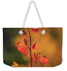 Weekender Tote Bag featuring the photograph Red And Gold by David Chandler