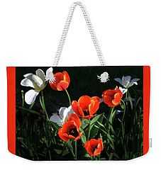 Weekender Tote Bag featuring the photograph Red And White Tulips by Kathleen Stephens