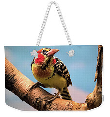 Red And Yellow Barbet Weekender Tote Bag