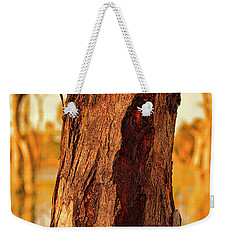 Weekender Tote Bag featuring the photograph Red Bark by Douglas Barnard