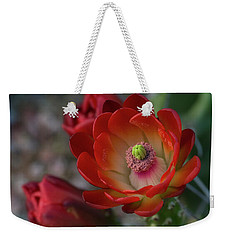 Weekender Tote Bag featuring the photograph Red Beauty  by Saija Lehtonen