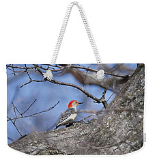 Weekender Tote Bag featuring the photograph Red-bellied Woodpecker 1134 by Michael Peychich