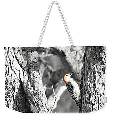 Weekender Tote Bag featuring the photograph Red-bellied Woodpecker by Benanne Stiens