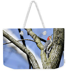 Weekender Tote Bag featuring the photograph Red-bellied Woodpecker by Gary Wightman