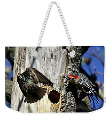 Red Bellied Woodpecker Harassed By A Starling Weekender Tote Bag
