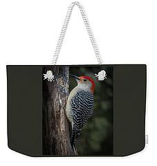 Red-bellied Woodpecker Weekender Tote Bag by Kenneth Cole