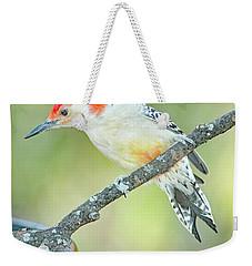 Red Bellied Woodpecker, Male Weekender Tote Bag
