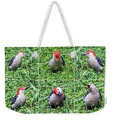 Red-bellied Woodpecker Posing In The Grass Weekender Tote Bag