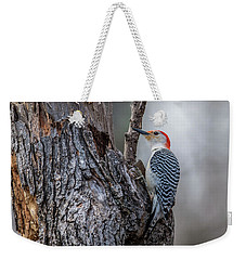 Weekender Tote Bag featuring the photograph Red Bellied Woody by Paul Freidlund