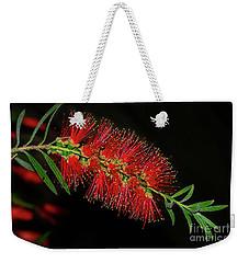 Weekender Tote Bag featuring the photograph Red Bottlebrush By Kaye Menner by Kaye Menner