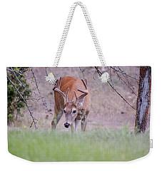 Red Bucks 6 Weekender Tote Bag