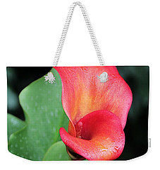 Weekender Tote Bag featuring the photograph Red Calla Lily by Katie Wing Vigil