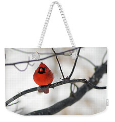 Weekender Tote Bag featuring the photograph Red Cardinal In Snow by Marie Hicks