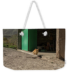 Red Cat And Green Shed Weekender Tote Bag by Patricia Hofmeester