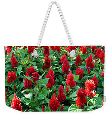 Weekender Tote Bag featuring the photograph Red Celosia Garden by Glenn McCarthy Art and Photography