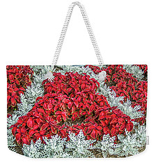 Weekender Tote Bag featuring the photograph Red Coleus And Dusty Miller Plants by Sue Smith