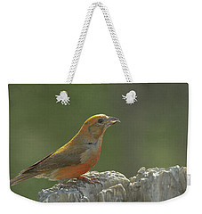 Red Crossbill Weekender Tote Bag by Constance Puttkemery