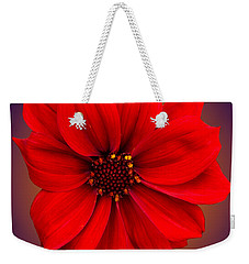 Weekender Tote Bag featuring the photograph Red Dahlia-bishop-of-llandaff by Brian Roscorla