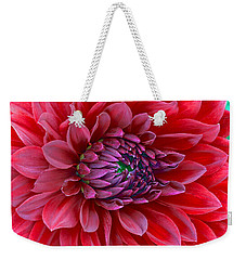 Weekender Tote Bag featuring the photograph Red Dalia Up Close by James Steele