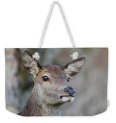 Weekender Tote Bag featuring the photograph Red Deer Hind - Scottish Highlands by Karen Van Der Zijden