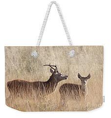 Red Deer Stag And Hind Weekender Tote Bag