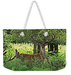 Weekender Tote Bag featuring the photograph Red Deer Stag by Rona Black
