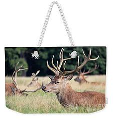 Red Deer Stags Richmond Park Weekender Tote Bag