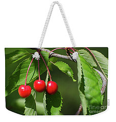 Weekender Tote Bag featuring the photograph Red Delicious by Kennerth and Birgitta Kullman