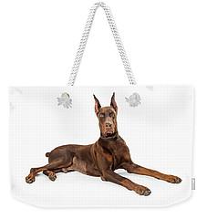 Red Doberman Pinscher Dog Lying Profile Weekender Tote Bag