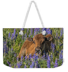 Weekender Tote Bag featuring the photograph Red Dog In Bed Of Lupine by Yeates Photography