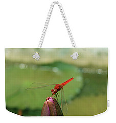 Red Dragonfly At Lady Buddha Weekender Tote Bag