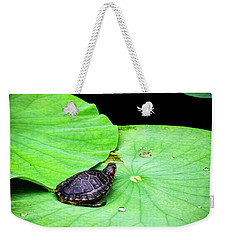 Red-eared Slider Weekender Tote Bag