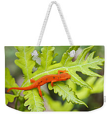 Red Eft Eastern Newt Weekender Tote Bag