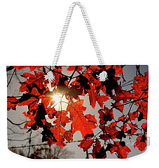 Red Fall Leaves Weekender Tote Bag