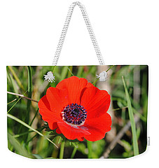 Red Anemone Coronaria 4 Weekender Tote Bag