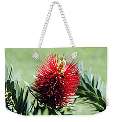 Callistemon - Bottle Brush 7 Weekender Tote Bag