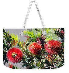 Callistemon - Bottle Brush 6 Weekender Tote Bag