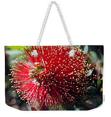 Callistemon - Bottle Brush 5 Weekender Tote Bag