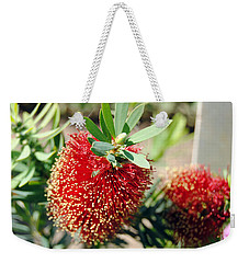 Callistemon - Bottle Brush 4 Weekender Tote Bag