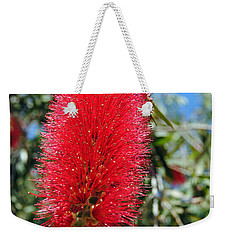 Callistemon - Bottle Brush 2 Weekender Tote Bag