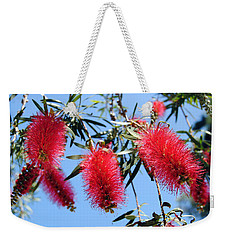 Callistemon - Bottle Brush 3 Weekender Tote Bag