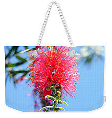Callistemon - Bottle Brush 1 Weekender Tote Bag
