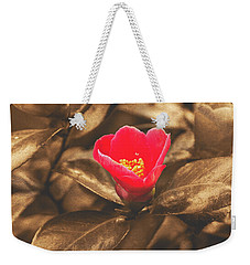 Weekender Tote Bag featuring the photograph Red Flower On Sepia Background by Jacek Wojnarowski