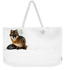 Red Fox In The Snow Weekender Tote Bag