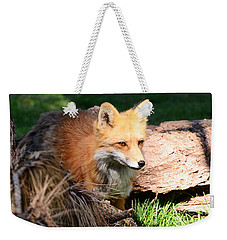 Red Fox On Patrol Weekender Tote Bag