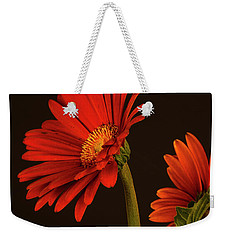 Red Gerbera Daisy 1 Weekender Tote Bag by Richard Rizzo