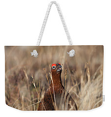Red Grouse Calling Weekender Tote Bag
