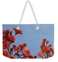 Red Gum Blossoms Australian Flowers Oil Painting Weekender Tote Bag