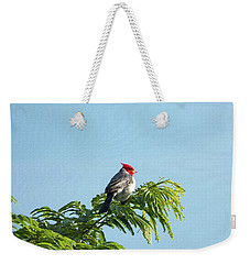 Red-headed Cardinal On A Branch Weekender Tote Bag